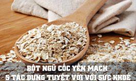 bột ngũ cốc yến mạch