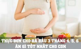 thực đơn cho bà bầu 3 tháng giữa thai kỳ